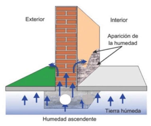 Esquema explicativo de humedad por capilaridad