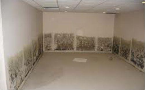 paredes con moho por filtraciones laterales en soterrado