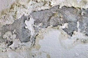 Desconches por humedad por filtración en soterrado