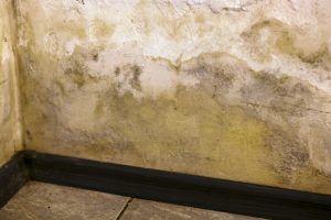 paredes con revestimiento deteriorado por filtraciones laterales en soterrado