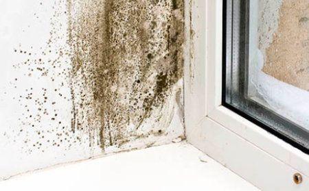 Moho provocado por humedad por condensación