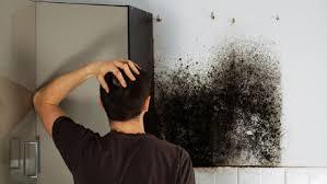 manchas negras en pared