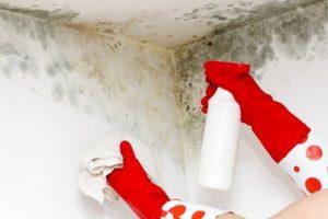 limpiar moho por humedad por condensación